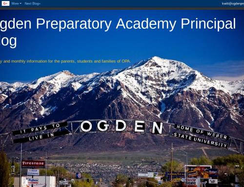 Principal's Blog Mid-Week : Social Action Activities March 14